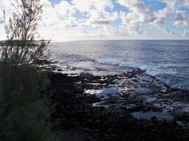 kustlinje kauai hawaii foto