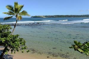 tropisk kust foto