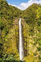 akaka faller, hawaii foto