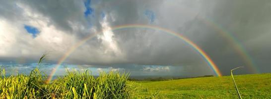över regnbågen foto