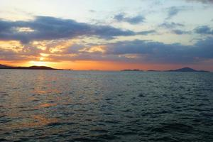 flores havet foto