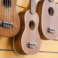 ukulele gitarr