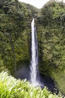 trevligt vattenfall på Hawaii foto