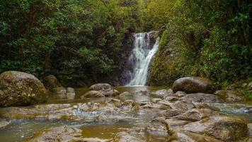 tropiskt regnskog vattenfall hawaii oahu foto