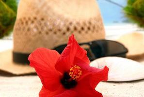 hatt på stranden foto