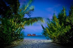 palm utsikt till strand villor på natt Maldiverna foto
