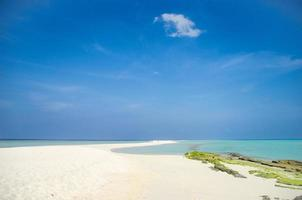 tropisk ö sandbank