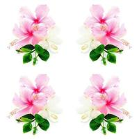 rosa och vita hisbiscus foto