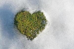 snö smälter i form av ett hjärta foto