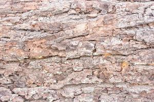 textur trä