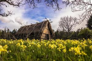 vikinghus i gotland, sverige foto