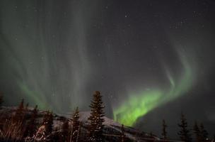 aurora borealis i lapland / sverige foto