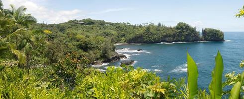 hawaiiansk tropisk scenarie foto