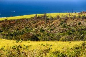 kauai västkust foto