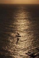 segelbåt vid solnedgången foto