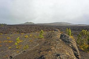 vulkanisk park, stor ö, hawaii
