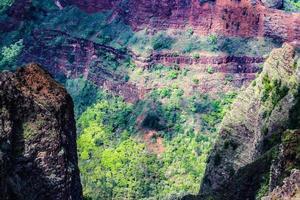 weimea canyon state park, kauai, hawaii foto