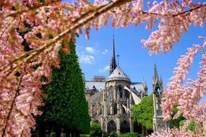 notre dame under våren i Paris, Frankrike