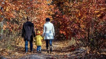 två generationers familj som går i höstlig skog bakifrån foto