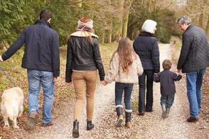 bakifrån av multi generationens familj på landsbygden promenad foto