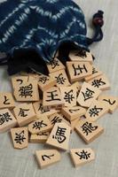 bit shogi foto