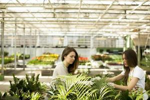 unga kvinnor i blommaträdgård foto