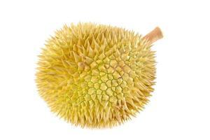 durian på nära håll foto