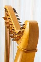 keltisk harpa närbild med vinkel foto