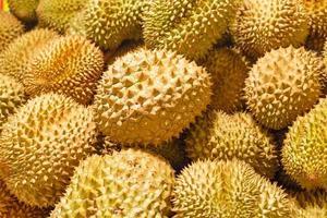 närbild durian foto