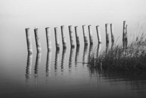 träbrygga, landningssteg i sjön foto