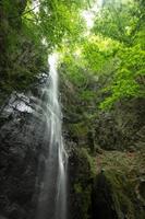 vattenfall och färsk grön (tokyo okutama hyakuhiro vattenfall) foto