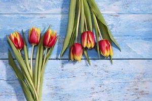 röda gula tulpaner, buketter på blått trä foto