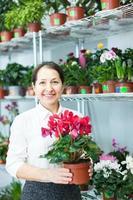 kvinna i blomsterbutik med cyklamen