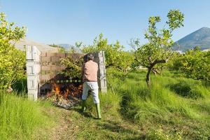 brinnande beskärningsavfall foto