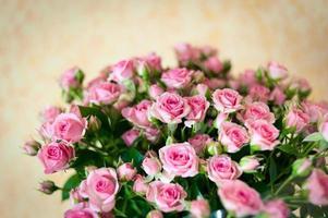 bukett färska rosa rosor foto