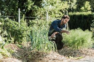 synergistiskt jordbruk foto