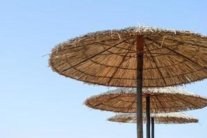 perfekta parasoller på stranden foto