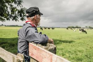 äldre lantbrukare tittar på en besättning i en betesmark foto