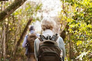 bakifrån av par som vandrar i skogen foto