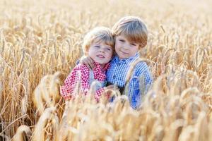 två små syskonpojkar som har kul på vetefältet foto
