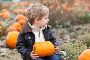 litet barnpojke på pumpa fält foto