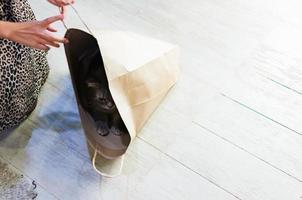 grinig katt som leker gömma i en papperspåse foto