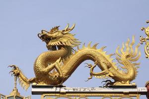 kinesisk drake. foto