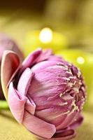 spa stilleben med aromatiska ljus, lotusblomma foto