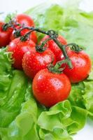 färska tomater närbild foto