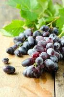 färska röda druvor foto