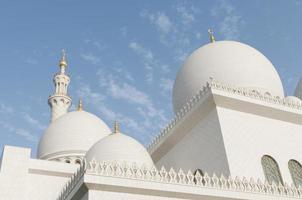 storslagen moské foto