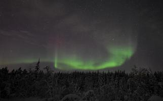 aurora borealis i lapland / sverige