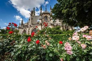 Notre Dame de Paris-katedralen med röda och vita rosor foto