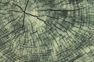 trä bakgrundsstruktur. gråmålat trä. foto
